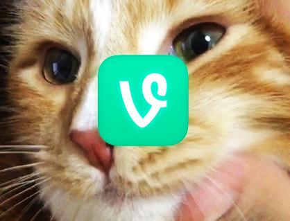 Vine(ヴァイン)の使い方 編集する方法(2) 6秒ショートビデオクリップSNS