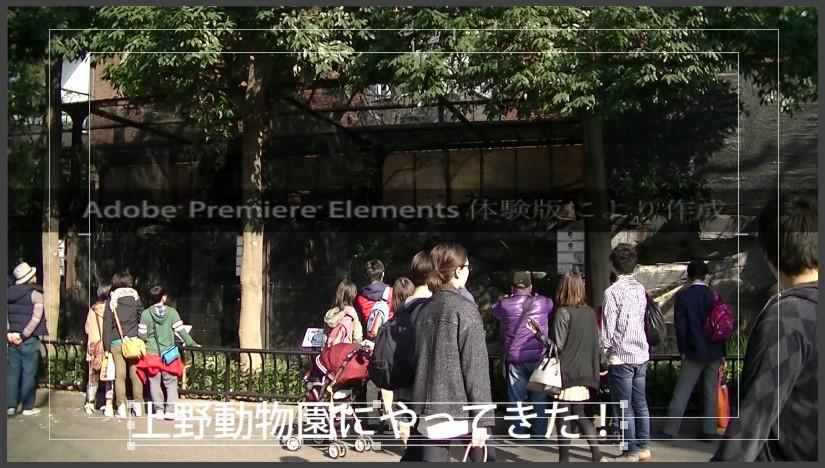 Adobe Premiere Elements14の使い方 テキストの位置変更