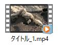 Prof. MediaでDVD/Blu-rayを変換した動画