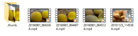 試しにViWiMiUS パソコンに取り込む方法deoの中を見ると、動画ファイルmp4と、サムネイル写真が入っています。