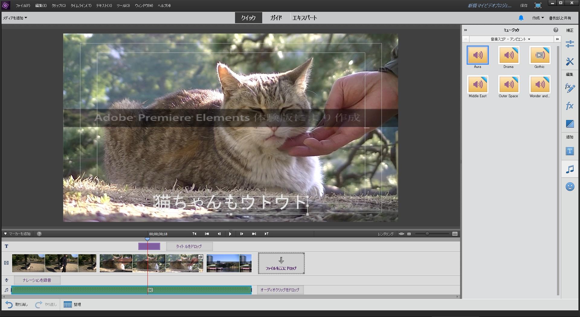 クイック編集モード Adobe Premiere Elements15の使い方