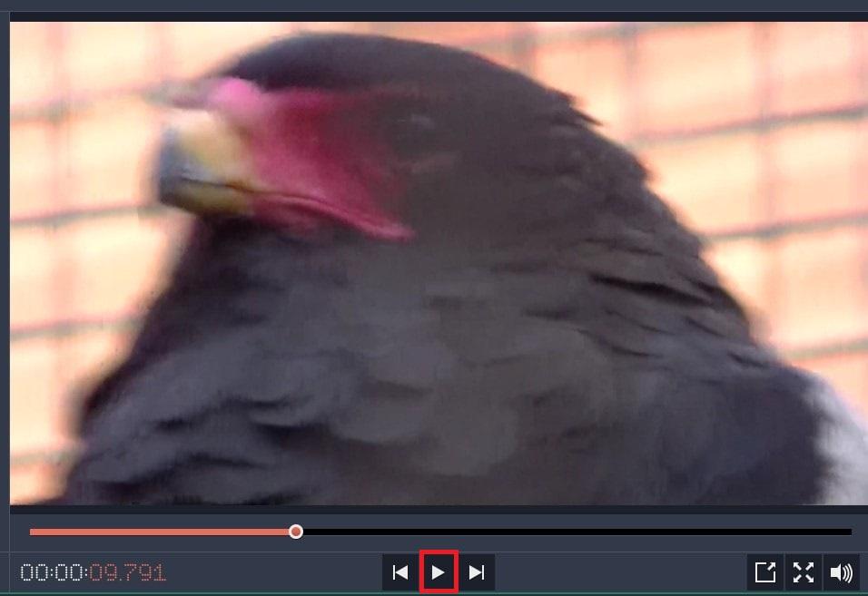 Movavi Video Editor 14タイムラインをプレビュー再生する方法