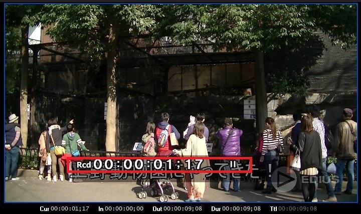 動画編集ソフトEDIUS Pro 9 プレビュー画面上のステータス表示を消す方法