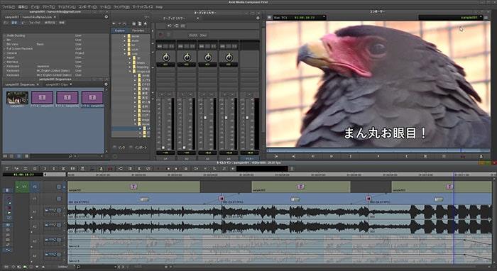 動画編集ソフトAvid Media Composerのインターフェイス