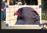 ピクチャ・イン・ピクチャの枠線の色を変更する方法 設定画面フィルタボタン  動画編集ソフトiMovie'13(ver10)