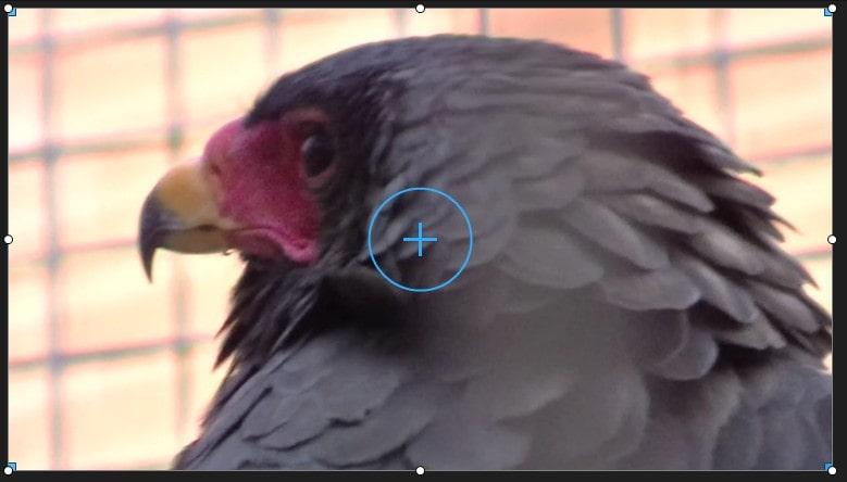 複数の動画トラックの活用 PowerDirector17の使い方
