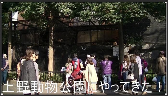 Shotcut テキストテロップ機能紹介画面
