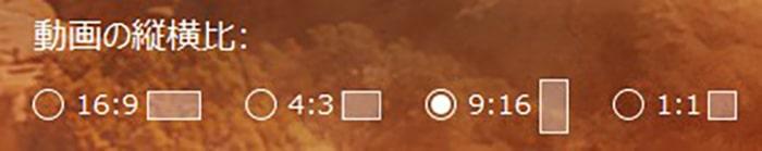 縦横比選択画面 PowerDirectorの使い方