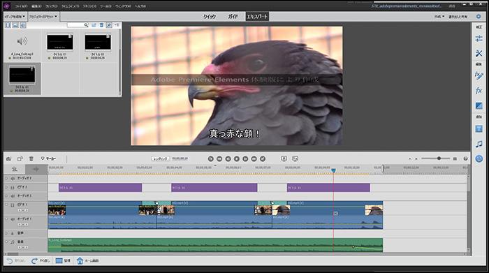 編集画面 Adobe Premiere Elements2020