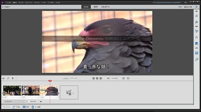 クイック編集モード Adobe Premiere Elements2020