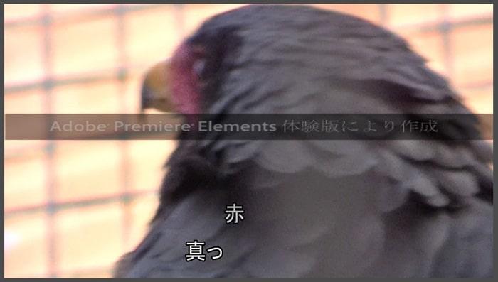 タイトルテキストテロップにアニメーションを付ける方法 Adobe Premiere Elements2020 Adobe Premiere Elements2020