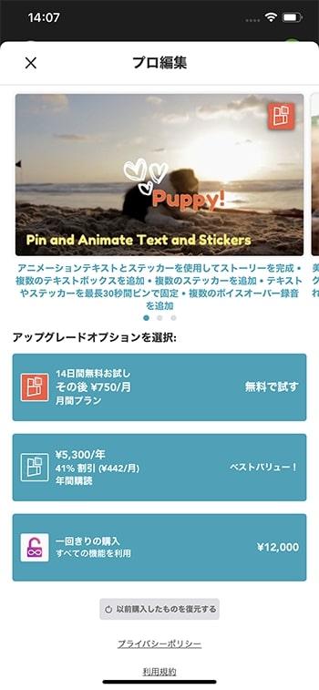 有料版料金表 動画編集アプリPicPlayPostの使い方