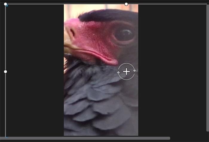 縦動画対応 PowerDirector365Mac機能紹介