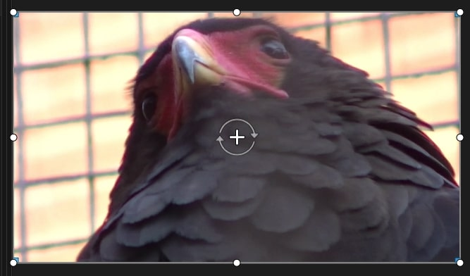 ピクチャインピクチャ動画を挿入する方法 PowerDirector365Macの使い方