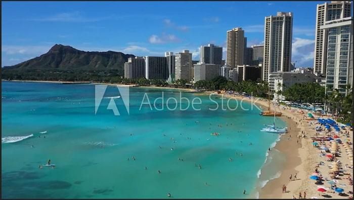 Adobe Stock Premiere Pro内のサンプル動画