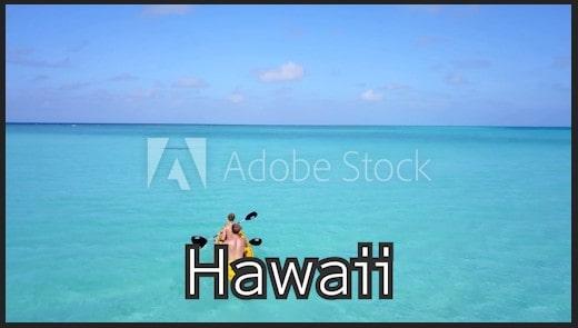 Adobe Stockの動画素材をダウンロードする方法