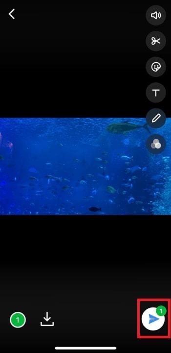 動画をトリミングカットする方法 LINEアプリから動画を共有する方法